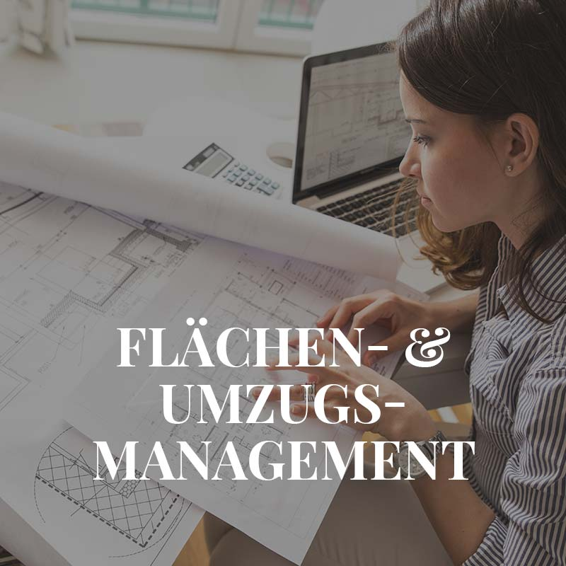 Unsere Leistungen Flächenmanagement und Umzugsmanagement